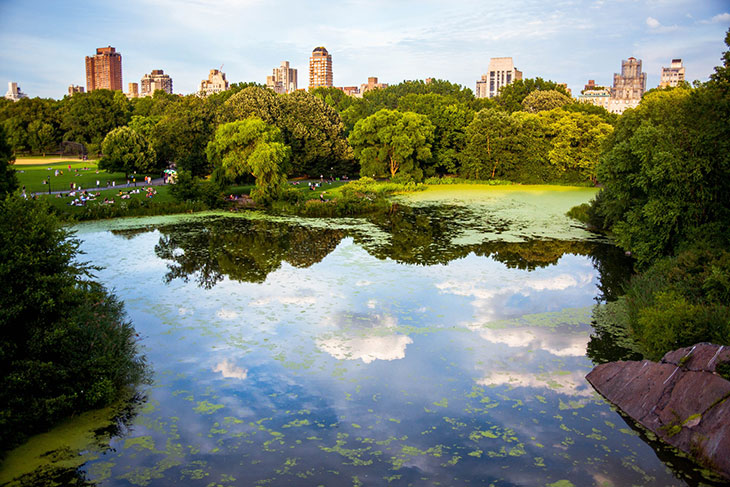 Top 8 Places in the World to #Treatyourself - Central Park